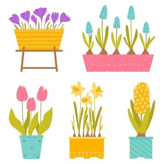 Conjunto de flores em vasos de primavera, isolado no fundo branco. ilustração em vetor em estilo simples.