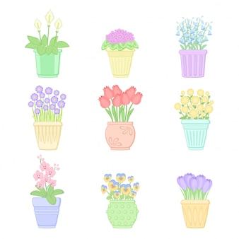 Conjunto de flores em vasos