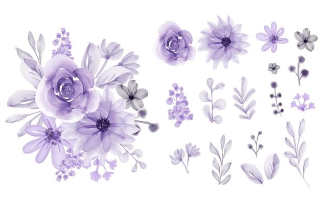 Conjunto de flores isoladas com folhas de flor roxa em aquarela macia