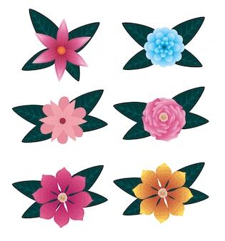 Conjunto de flores naturais e rosas com folhas