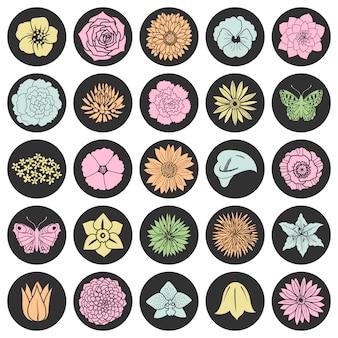 Conjunto de flores planas abstratas