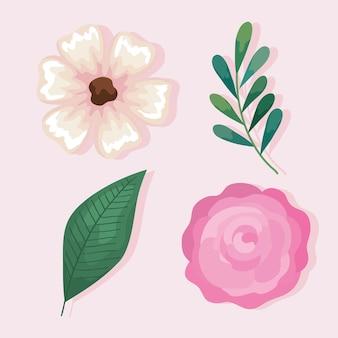 Conjunto de flores rosa com folhas