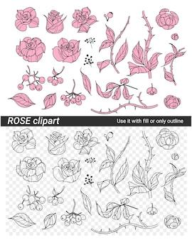 Conjunto de flores, rosas e ramos ilustração vetorial clipart grupo de objetos de design
