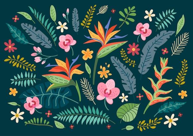 Conjunto de flores tropicais