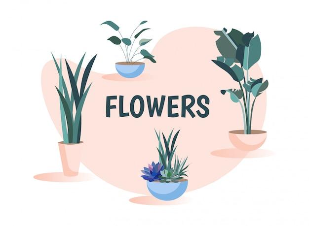 Conjunto de flores verdes com plantas em casa dos desenhos animados em vasos