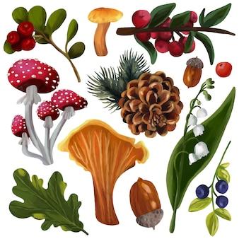 Conjunto de floresta outono pinha bagas bolota folhas cogumelos