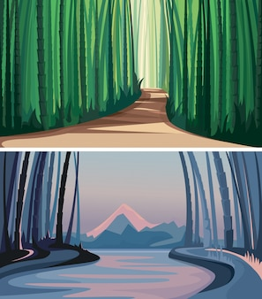 Conjunto de florestas de bambu. belas paisagens da natureza.