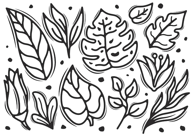 Conjunto de folha doodle