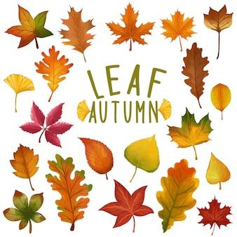 Conjunto de folha pintada em aquarela, clipart de folhas de outono. desenho isolado no fundo branco.