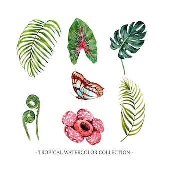 Conjunto de folhagem em aquarela, floral, borboleta