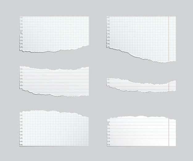 Conjunto de folhas de caderno rasgado isolado em cinza