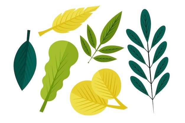 Conjunto de folhas de design plano
