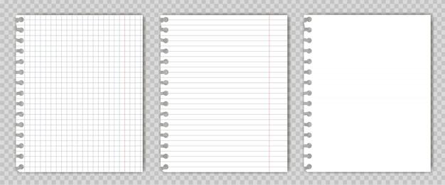 Conjunto de folhas de livro de cópia em branco com bordas rasgadas.
