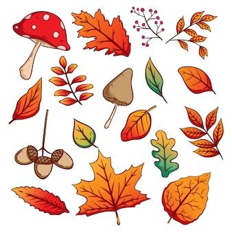 Conjunto de folhas de outono coloridas, bolotas e cogumelos com estilo mão desenhada