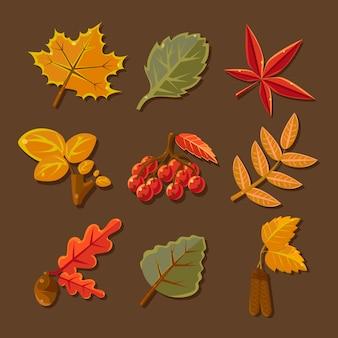 Conjunto de folhas de outono coloridas. vetor