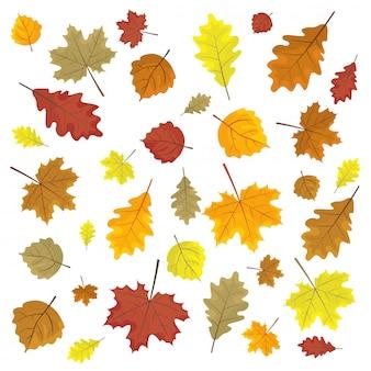 Conjunto de folhas de outono coloridos. elementos de design ilustração vetorial. folhas de forma aleatória.