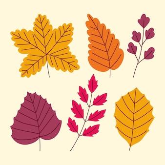 Conjunto de folhas de outono desenhadas à mão