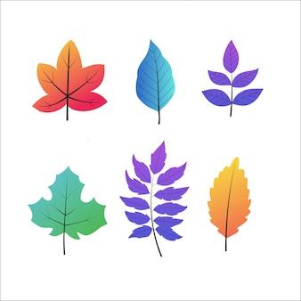 Conjunto de folhas de outono, isolado no branco