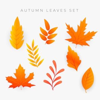 Conjunto de folhas de outono laranja
