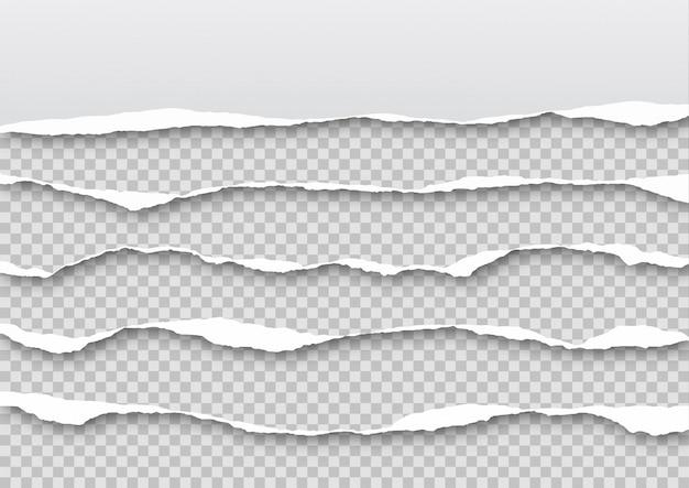 Conjunto de folhas de papel rasgado