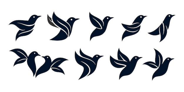 Conjunto de folhas de pássaro ou design de logotipo de pássaro da natureza premium vector