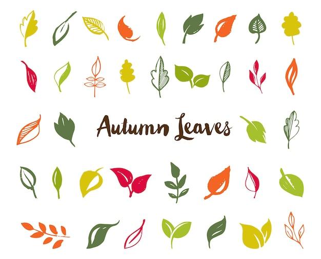 Conjunto de folhas desenhadas à mão, folhas verdes, esboços e rabiscos de folhas e plantas, coleção de vetores de folhas verdes