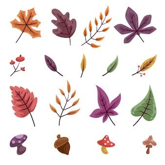 Conjunto de folhas e flores de outono
