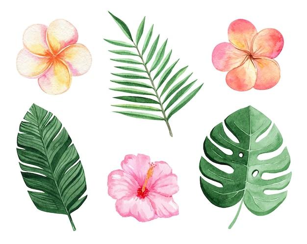 Conjunto de folhas e flores tropicais em aquarela isolado no branco