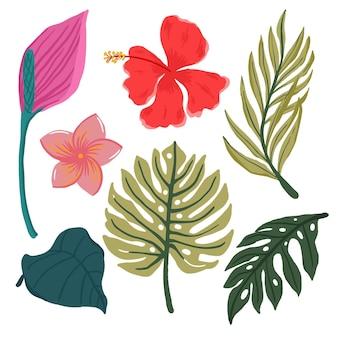 Conjunto de folhas e flores tropicais