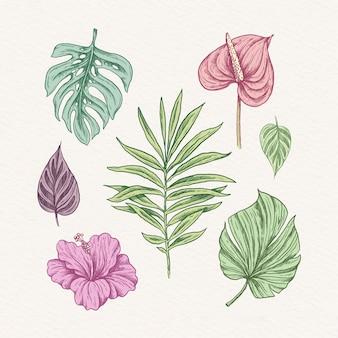 Conjunto de folhas e flores tropicais Vetor grátis