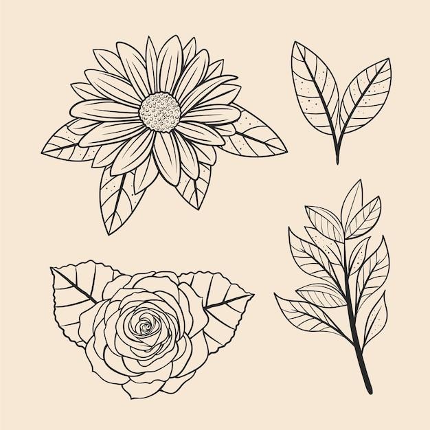 Conjunto de folhas e flores
