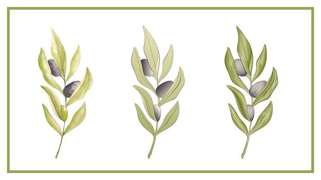 Conjunto de folhas em aquarela