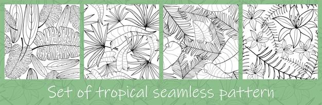 Conjunto de folhas exóticas da selva desenhada à mão com contorno em cores preto e branco