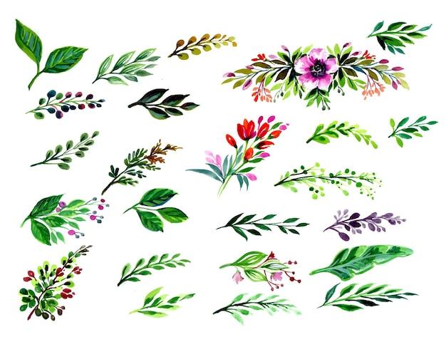 Conjunto de folhas lindas em aquarela