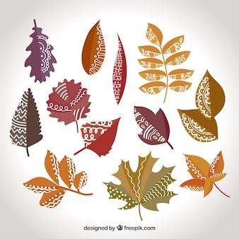 Conjunto de folhas secas decorativas desenhadas a mão