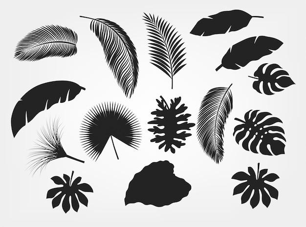 Conjunto de folhas tropicais de silhueta isolado