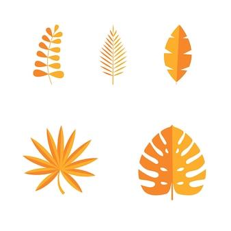 Conjunto de folhas tropicais de verão isoladas no fundo branco. ilustração vetorial. eps10