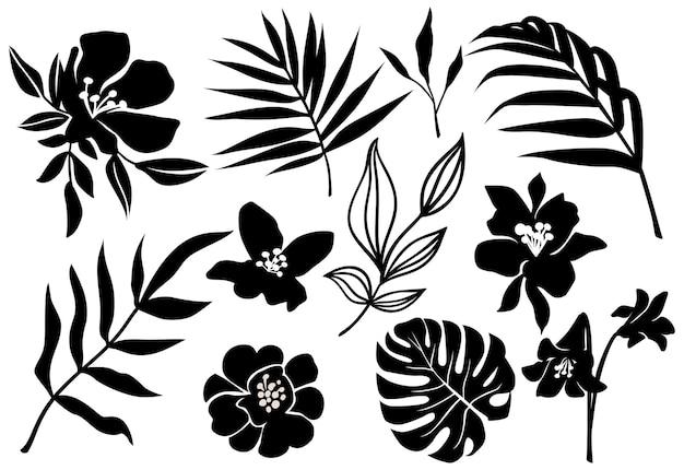 Conjunto de folhas tropicais negras e silhuetas de flores negras