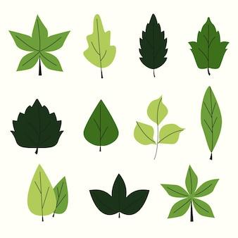 Conjunto de folhas verdes de design plano