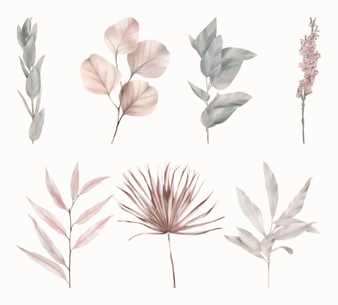 Conjunto de folhas verdes e rosa