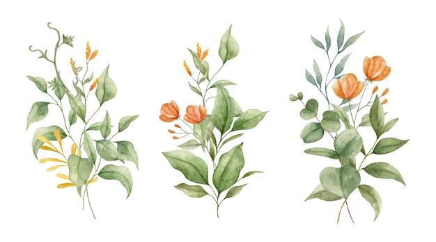 Conjunto de folhas verdes pintadas à mão em aquarela e coleção de ramos