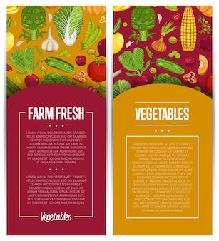 Conjunto de folhetos de agricultura de vegetais frescos