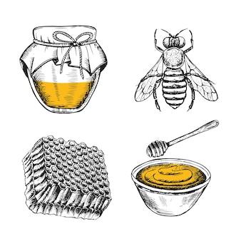 Conjunto de folhetos de mel e abelhas ilustrações desenhadas à mão.