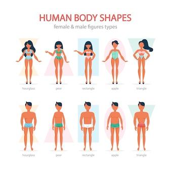 Conjunto de formas do corpo masculino e feminino. triângulo e retângulo