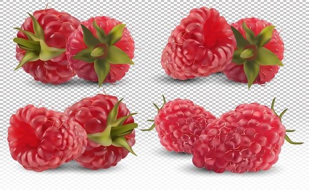 Conjunto de framboesa de diferentes ângulos. framboesa fresca madura útil rica em vitaminas, produto natural. ilustração vetorial realista