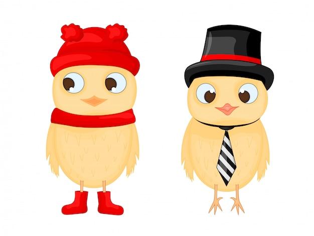 Conjunto de frango de pássaros bonito dos desenhos animados com chapéu, gravata e cachecol