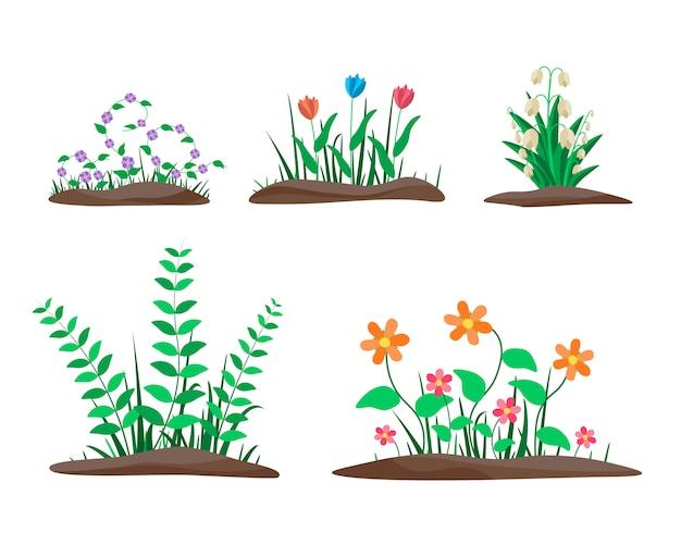 Conjunto de fronteiras de flor. flores da primavera, crescendo no jardim.