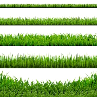 Conjunto de fronteiras de grama grande, ilustração. .