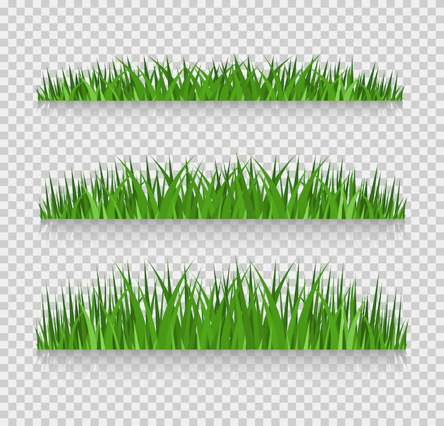 Conjunto de fronteiras de grama, ilustração vetorial