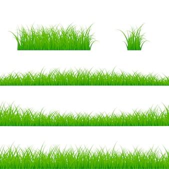 Conjunto de fronteiras de grama. panorama da planta de grama. ilustração em fundo branco